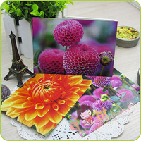 [EIGHT] Postcard /Greeting Cards Wholesale (8 pcs/set; 10 sets/lot) Dahlia / For postcrossing