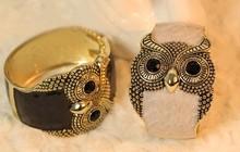 Vintage Enamel wide exaggerated owl bracelets bangles kpop luxury pulseras mujer pulseiras femininas brazalete coruja buho