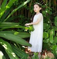2015 Summer Girls Chiffon Dress White Lace Princess Dress 10,12,13 Years Girl Quality Dress