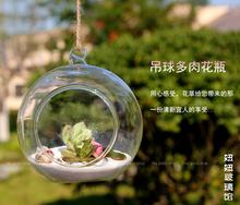 Terrarium Borosilicate Hanging Glass Flower Vase & 6cm Round sphere Tabletop Vases Home Decor Wedding Decoration Transparent(China (Mainland))