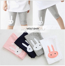 Retail 2 7years 4 color rabbit footless girls knee length kid Five pants Cropped clothing kids
