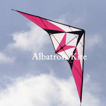 Albatross 2.4m breeze stunt kite/ sport kite /stunt kite / free shipping