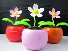 popular flower solar