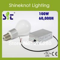 100W E40 High Frequency Electrodeless Light Source 3 year warranty Pear Shape  220V 2700K/6500K Free Maintenance