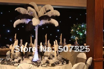 16-18'' Wholesale Price Ostrich Feather For Party/Wedding/Festival, Multi-color, Free Shipping By EMS