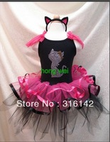 2012latest wholesales baby dress,kids pettiskirt ,child dancing skirt Generous beautiful FL-003 hot pink