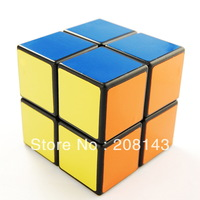 ShengShou 2x2 Speed Cube  Magic Cube Black