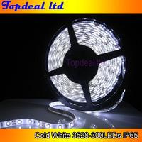 5meters 3528 300leds led strip lights waterproof  Ip65 DC 12v flexible Cold white