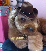 Trendy dog hats many designs,solid colour dog cowboy hat,free size dog cap,cat hats,pet hats,dog grooming accessories