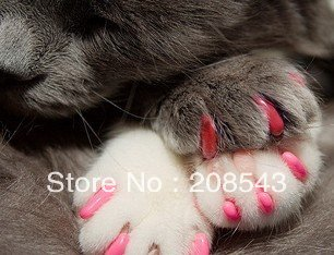 Free shipping, MOQ: 50pcs, Soft Cat nail cap , 4 different sizes,  11 colours available ,wholesale from factory