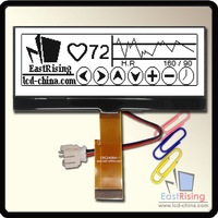 New Release 240X64 COG Display FSTN LCD with Free Delivery