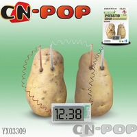 Potato clock digital clock Energy saving environmental protection educational toys green science