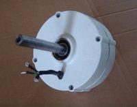 200w rare earth permanent magnet portable generator