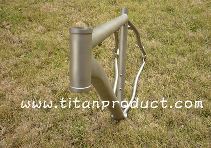 (Sandblasting Finish) Titanium 29ER Frame (For Belt Drive, With Sliding Dropouts and Bending Down Tube)
