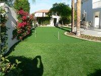 Anti-UV grass