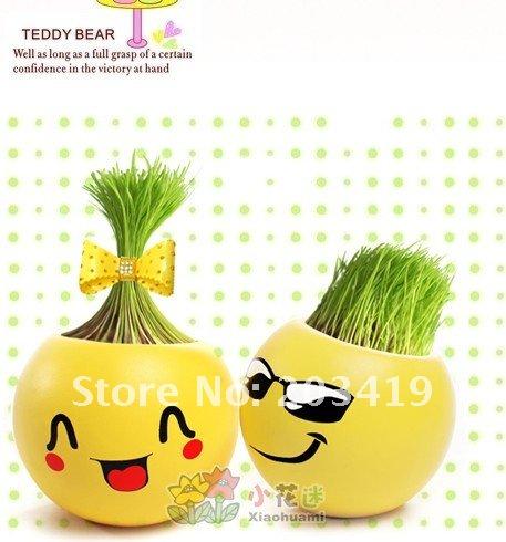 Gift face expression Hair man Plant Bonsai Grass Doll Office Mini Plant Fantastic Home Decor pot+seeds 6 design CN post(China (Mainland))