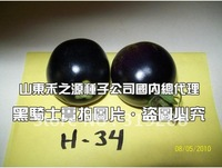 "5pcs/bag black tomato ""Black Knight"" vegetable Seeds DIY Home Garden"