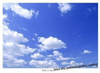 S-12032 sky and clouds printed ceiling film