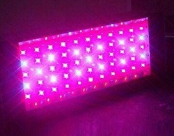 Powerful 100W LED grow light can replace standard 600W HPS grow light + free shipping(China (Mainland))