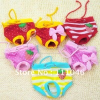 Free delivery + Hot sale, pet clothing, fashion design, physiological pants, diapers