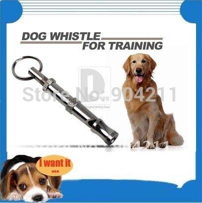 entrenamiento mascotas: