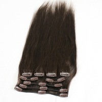 hot sale/100% indian virgin remy clip on hair extensions / clip in hair extension/4#,6#