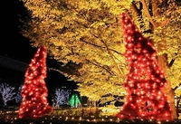 Holiday Lamps 58ft 18m 100 LED Red Solar Powered Fairy Lights Hot Sale 10pieces wholesales