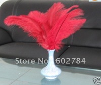 "Free shipping 100pcs/ lot 8-10""  20-25cm red ostrich feathers for wedding decoration"