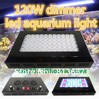 Free shipping led aquarium light  dimmable 120w(55x3w) for Reef coral  Blue white 410nm bridgelux chip in Stock