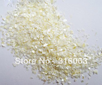 Free Shipping 1kg white Crushed Shell Powder for Nail Art Decoration LH306-09