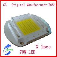 70W  LED  lamp