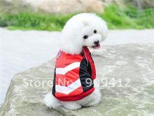 dog suit promotion