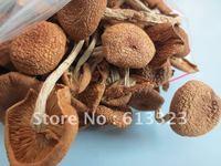 100% Nature Dried mushrooms / Top grade Agrocybe aegerita / Tea mushrooms / 50gram pack
