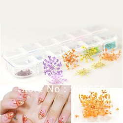 12 Colors Real Dry Dried Flowers Decoration Nail art sticker DIY Tips Free Shipping(China (Mainland))