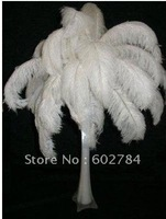 EMS Free shipping 50pcs 50-55cm 20-22inch pure white Ostrich Feather ostrich plumes wedding feathers center pieces