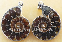 Free Shipping ~ Mixed Natural Million Years Old Ammonite Fossil Conch Sea Snail Opened Jewelry Necklace Pendants Beads Wholesale
