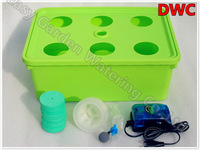 Hydroponics system with 6 site of basket cup. Cloner bucket. DWC.Free shipping