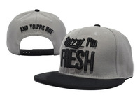 Sorry Im Fresh and you're not Snapback caps fashion adjustable hats grey  freeshipping