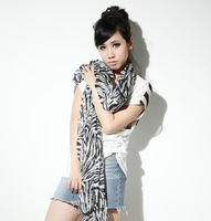 Free shipping! 2012 New women Leisure Large scarf / Shawl / Black,Zebra pattern