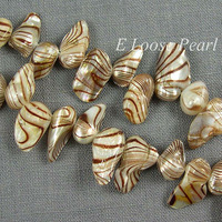 AA Freshwater Pearls Top Drilled Tail pearl Brown cream white Loose Pearl 8.5-9.5mmX14-17mm 45Pcs Full Strand Item No : PL8003