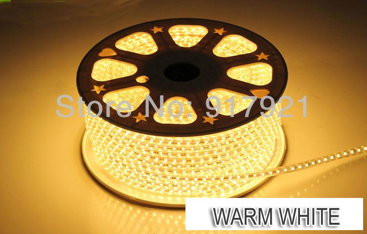 100M 3528 SMD LED Flexible Strip 220V Warm White waterproof strip lighting+ Power cord +free shipping(China (Mainland))