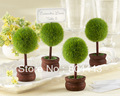Factory directly sale 60pcs/lot Wedding favor Topiary Photo Holder/Place Card Holder
