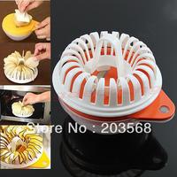 D19+Free Shipping Microwave Vegetable Fruit Apple Potato Crisp Chip Slicer Maker DIY Set