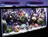 20000K  white/black LED Aquarium Lights for Coral Grow