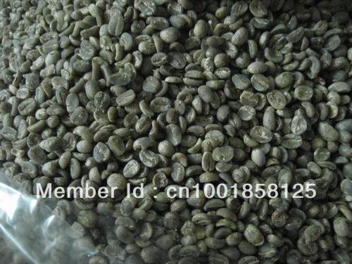Gongshanshe Yunnan Gaoligongshan zhaizi green bean
