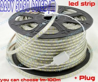 High bright Waterproof 220V SMD 5050 60 LED Strip Flexible Light IP65 Lamp + 220V Power Adapter free shipping