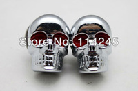 motorcycle parts 2 X Chrome SKULL License Plate Frame Screw Bolts Kit