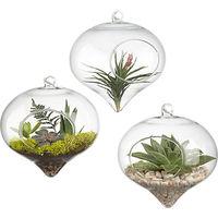 Free shipping fashion glass flower vase transparent accessories home creative decoration unique office decor