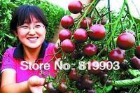 Black pearl tomato seeds 20 pcs