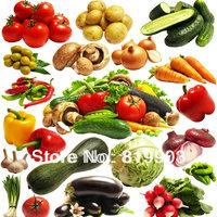 Vegetable seeds package multi-choice  A.1040 pcs B 870 PCS